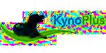 RijnWeb - Internetbureau Nijmegen e.o. Klant | KynoPlus
