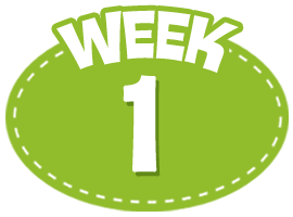 RijnWeb 100 Day Challenge